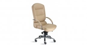 9 to 5 Ergonomic Chair