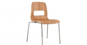 Ergcraft chair