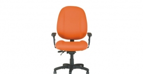 Ergocraft Ergonomic Chair
