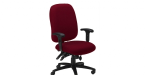 Mayliine Ergonomic Chair