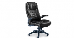 Mayline Ergonomic Chair