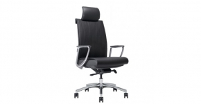 Chair, Office Master